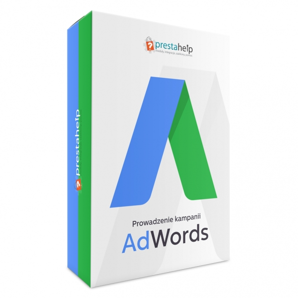 Prowadzenie Kampani adWords
